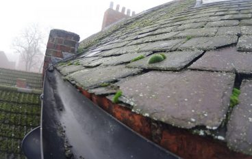 The expense for local gutter cleaning